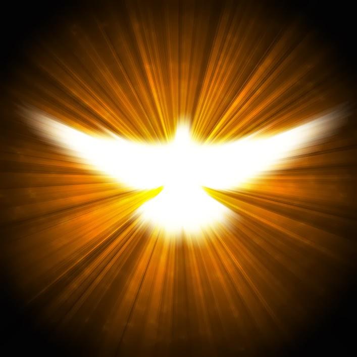 """""""O Espírito Santo é uma luz e uma força. É ele que nos faz distinguir o verdadeiro do falso e o bem do mal""""."""
