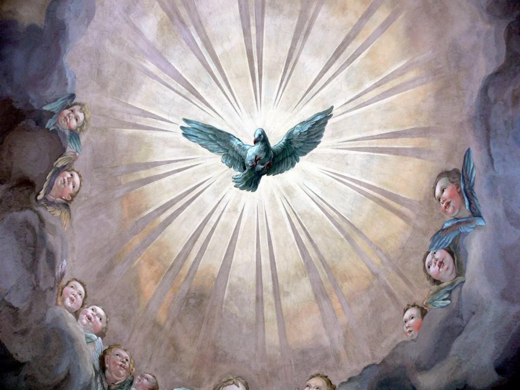 """O Santo Espírito repousa nas almas justas, como a pomba no ninho. Acalenta os bons desejos, como a pomba os seus filhotes."""