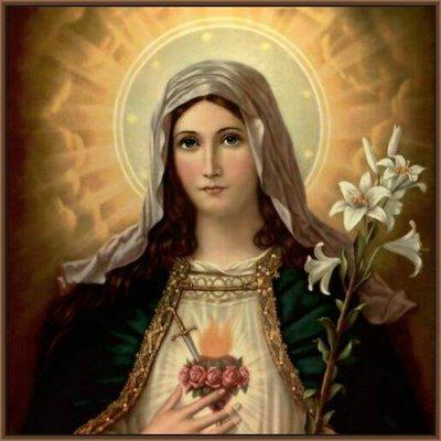 Imaculado Coração de Maria 3