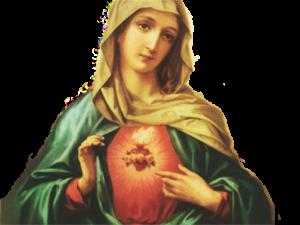 Coração de Maria - Fundo Transparente